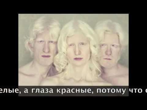 Демченко АВ Охотник из Тени Книга I