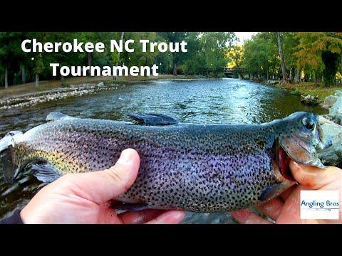Cherokee NC Fishing!!!