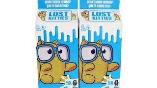 Lost Kitties Multipack Blind Box Unboxing Toy Review