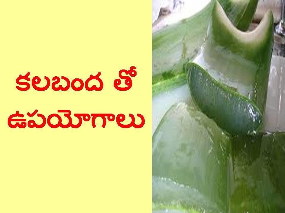 Best Uses Of Aloe Vera In Telugu Ii Latest Health Tips