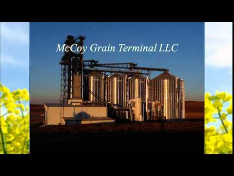 Economics of Biodiesel Plant Location and PNW Grain Marketing