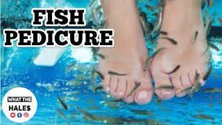 Fish PEDICURE What The Hale$ with George at Garra Foot Spa In Columbus Ohio