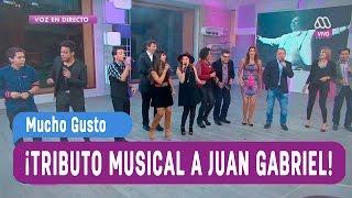 Tributo musical a Juan Gabriel - Mucho Gusto 2016