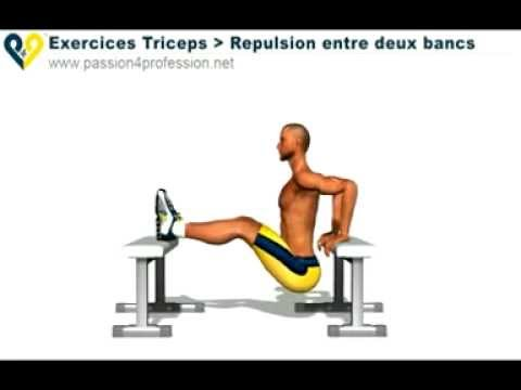 Exercices Musculation Triceps - Repulsion 2 bancs - YouTube 17bc9fd7f9e