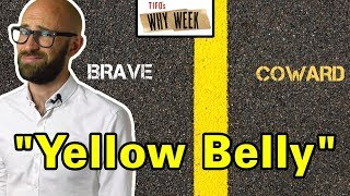 Why Week: Why Does Yellow Mean Cowardly?