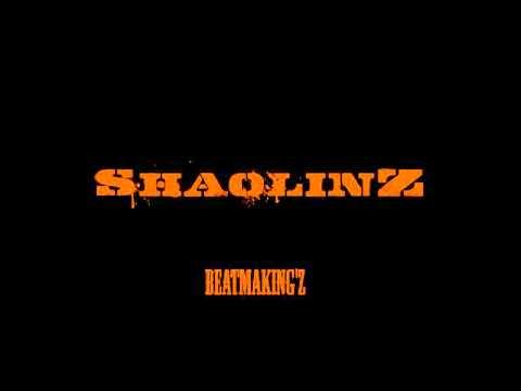 Sha0linZ Instrumental'Z #5 - M44-7