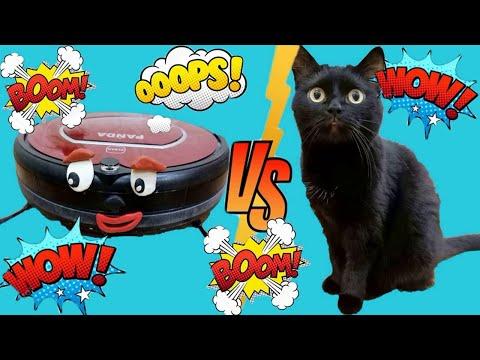 РОБОТ пылесос против кошки