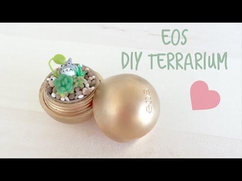 DIY EOS Terrarium with Totoro
