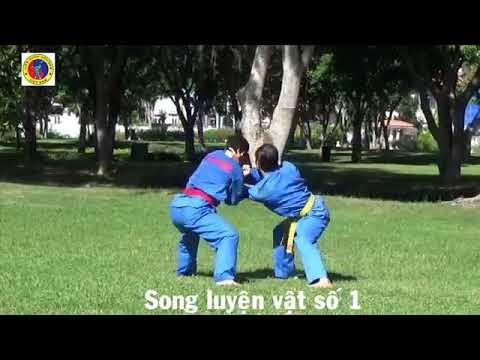 Vovinam   Lam đai 3    SONG LUYỆN VẬT 01