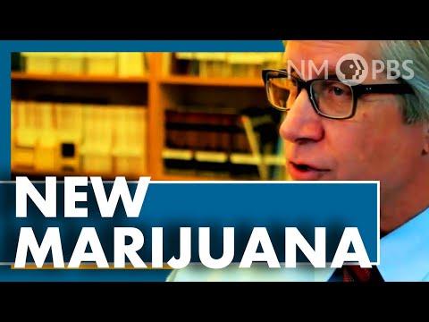 """Episode 1013   """"New Marijuana"""" Documentary: Issues"""