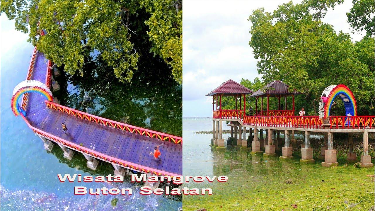 Jembatan Mangrove Buton Selatan   YouTube
