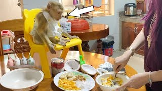 Monkey Baby DouDou And Mom Make Ice Cream For Snack At Evening