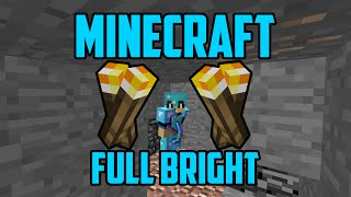 Minecraft Full Brightness (NO HACKS)