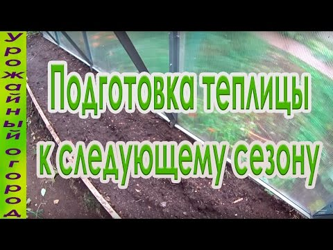 Даёшь богатый урожай: почему так важна обработка теплицы осенью, как её выполнить