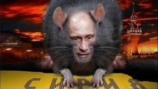 Орхан Джемаль - Сирийский сыр для Кремлевских крыс
