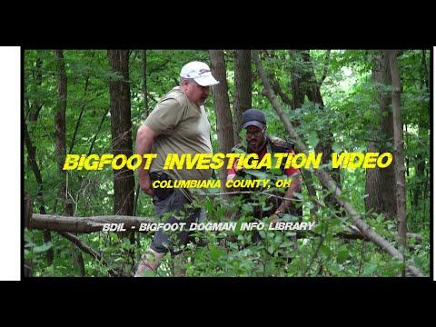 BDIL Bigfoot Investigation, Columbiana County - OH, 09/2019