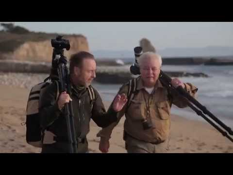 The Art of Seeing | Nature Photography with Frans Lanting