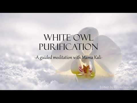 White Owl Purification 432Hz Guided Meditation