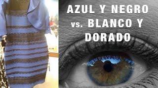 ¿Cómo Puedes No Ver Que Este Vestido Es Azul Y Negro? | Inteligencia Social