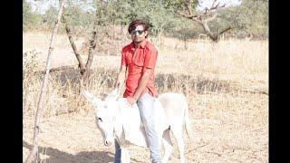 THUGS OF NAGAUR,नागौर के ठग,राजस्थानी कॉमेडी,मारवाड़ी कॉमेडी,