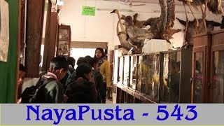 प्राकृतिक ज्ञानको केन्द्र,प्रकृति बुझ्न संग्रहालय | NayaPusta - 543