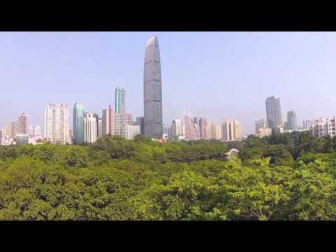 Amazing aerial Shenzhen