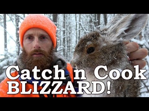Catch n Cook HARE & GROUSE! | IN A SNOW BLIZZARD!!! | Far NORTH CANADA