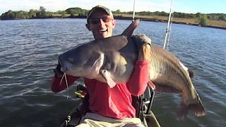 Kayak Catfishing: How to catch trophy size blue catfish in a kayak