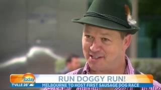Melbourne's Sausage Dog Race