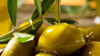 Как хранить оливковое или подсолнечное масло в домашних условиях чтобы не прогоркло в квартире