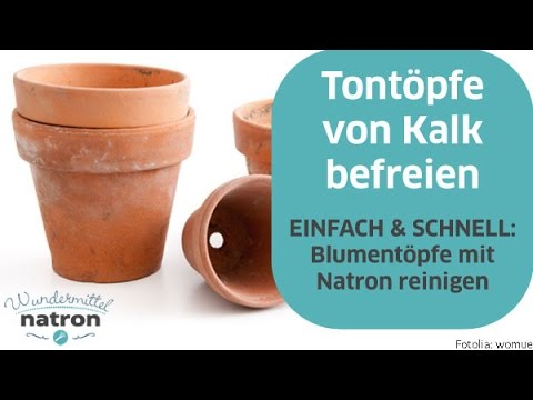 blumentopf reinigen tont pfe mit natron von kalk befreien youtube. Black Bedroom Furniture Sets. Home Design Ideas
