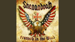 Freebird in the Wind YouTube Videos