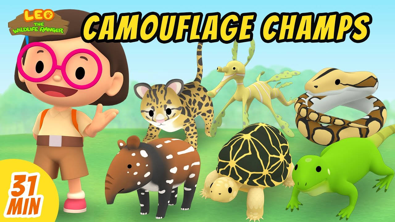 Camouflage Champs Minisode Compilation - Leo the Wildlife Ranger | Animation | For Kids