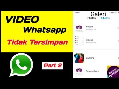 Cara Mengatasi Video Whatsapp Tidak Tersimpan Di Galeri Part 2 Youtube