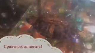"""Фильм """"Завтрак у черепашек""""."""