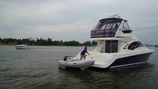 Sterk - Sea Ray 420DB