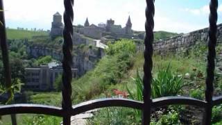 видео Цветок на камне Каменец Подольская