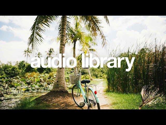 Palmtrees — Scandinavianz [Vlog No Copyright Music]