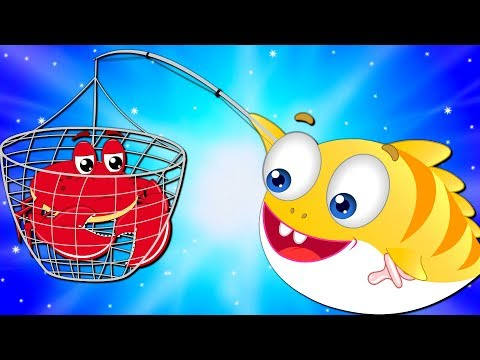 Little Crab Crying Stuck in the Hole Rescued by Baby Shark   Cartoon for Kids indir