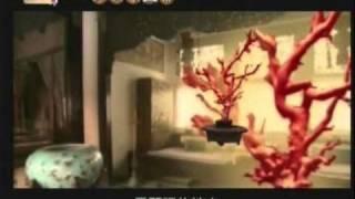 『紅珊瑚』特輯003.wmv