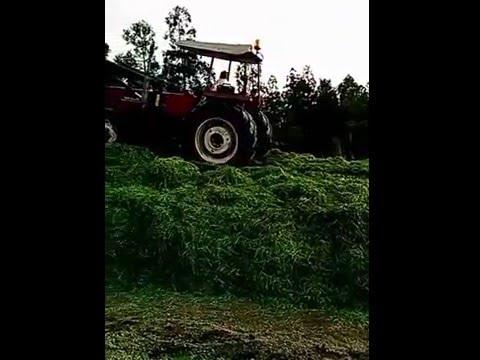 Fiat 70-66 #Monte_Herb