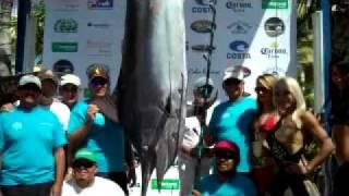 CatchStat | 2010 Bisbee's Black & Blue Fish #6826