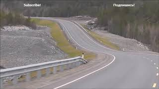 Trip from Murmansk, Russia to Kirkenes, Norway for 5 minutes