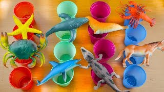Learn Animals Names Colored cups of Toys Jungle Animals Sea Animals Zoo Animals