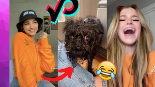 Funny Tik Toks To Watch In Bed 🤣🛌