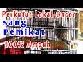Perkutut Lokal Gacor Pemikat Suara  Ampuh  Mp3 - Mp4 Download