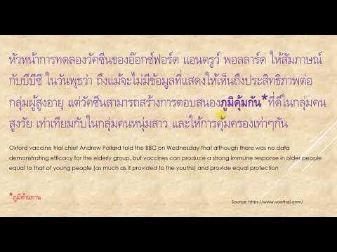 Thai Translation 4