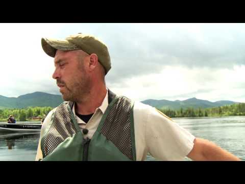 Here's How Fishing Ponds Are Stocked In New Hampshire | North Woods Law