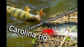 Каролинская оснастка, красный рак или коричневый, какой уловистей. Bait Breath Skeleton Shrimp 2.7