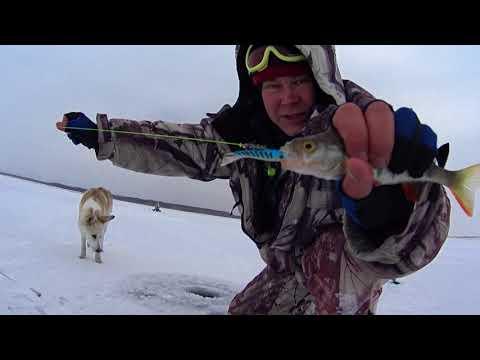 Зимняя рыбалка на братском водохранилище